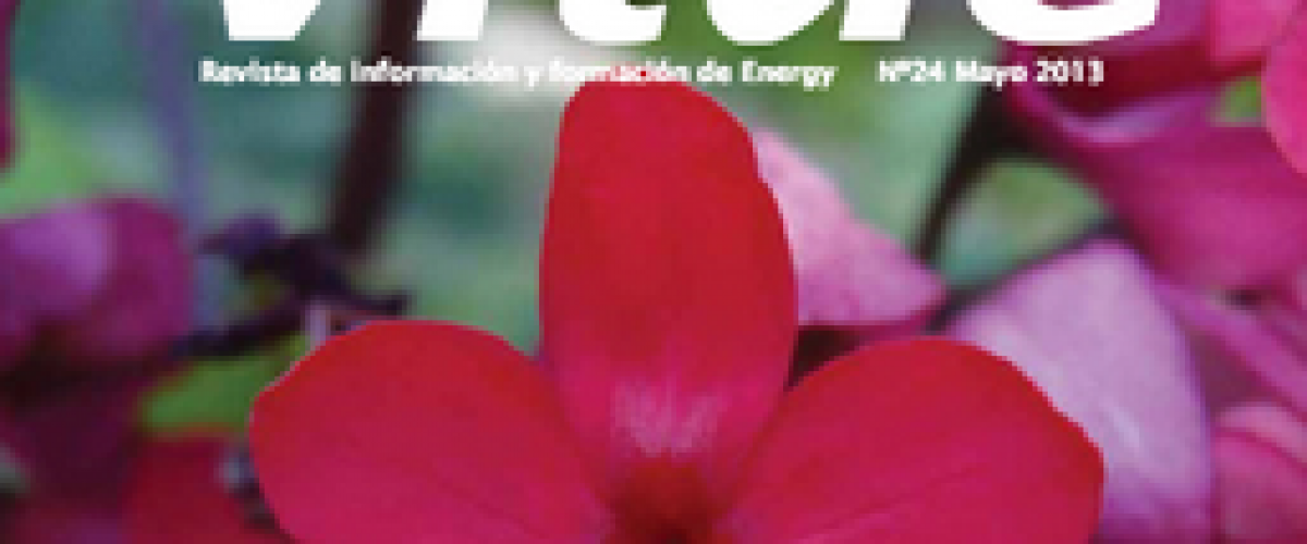 Revista Vitae, nº 24, mayo 2013