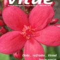 Revista Vitae, nº 26, Otoño 2013