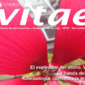 Revista Vitae, nº 32, noviembre 2014