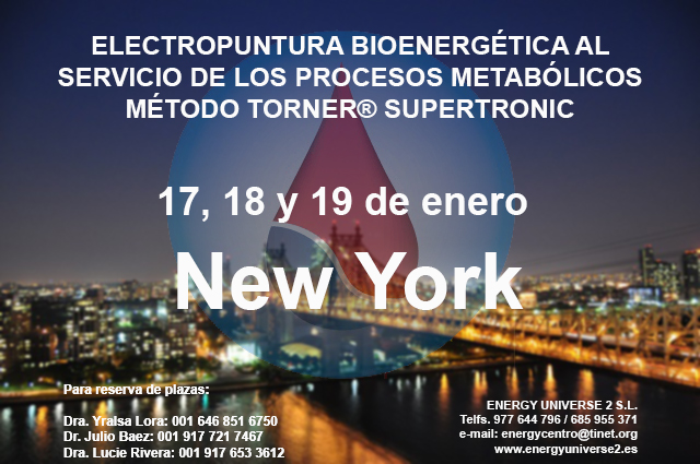 New York Energy enero