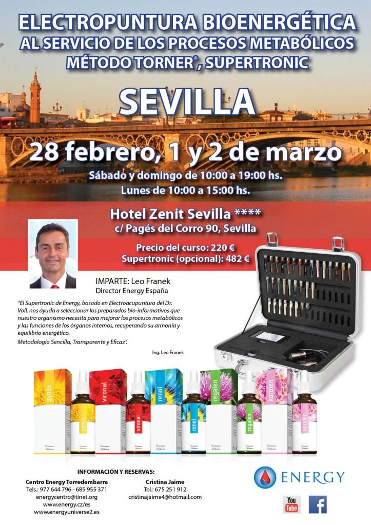 Seminario ENERGY Sevilla 28 FEBRERO, 1 y 2 MARZO 2015 -