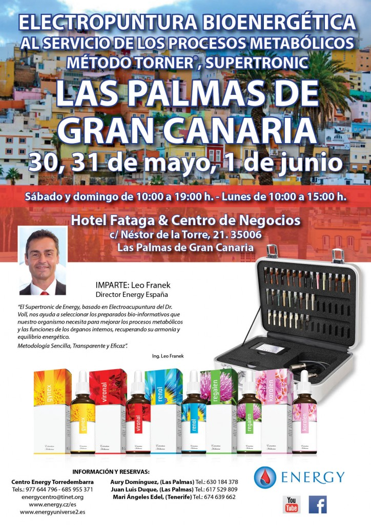 Seminario ENERGY Las Palmas de Gran Canaria 30 y 31 MAYO y 1 JUNIO 2015