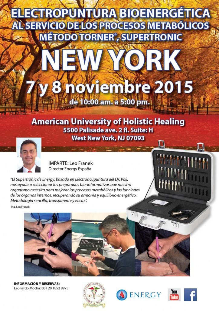 Seminario ENERGY Nueva York 7 y 8 noviembre 2015 (1)