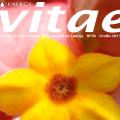 Revista Vitae nº36, otoño 2015