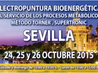 Seminario Electropuntura Bioenergética (Sevilla, 24, 25 y 26 de octubre)
