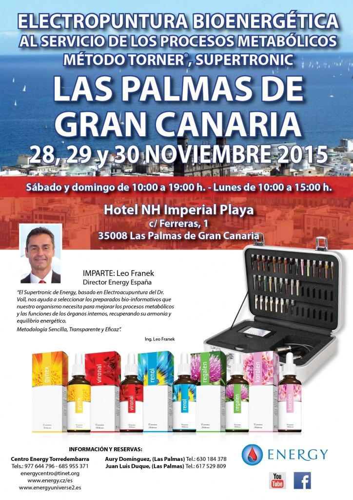 Seminario ENERGY Las Palmas de Gran Canaria 28,29 y 30 NOVIEMBRE 2015