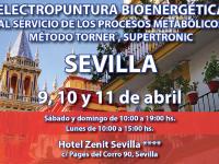 Seminario Electropuntura Bioenergética (Sevilla, 9, 10 y 11 de abril)