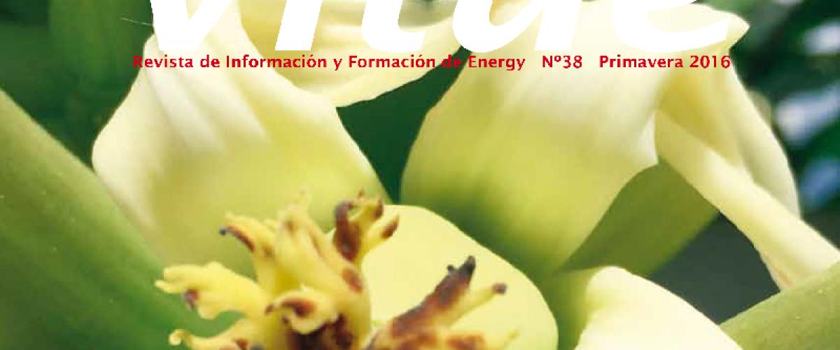 Revista Vitae 38, primavera 2016