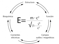 La teoría de la Relatividad y Energy