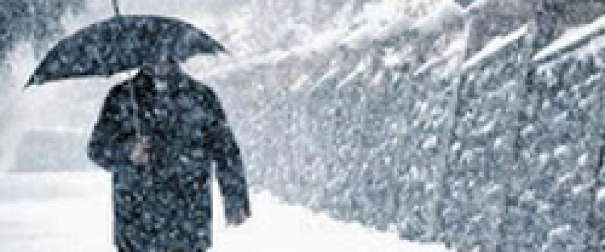 El invierno, elemento agua, preparado Renol
