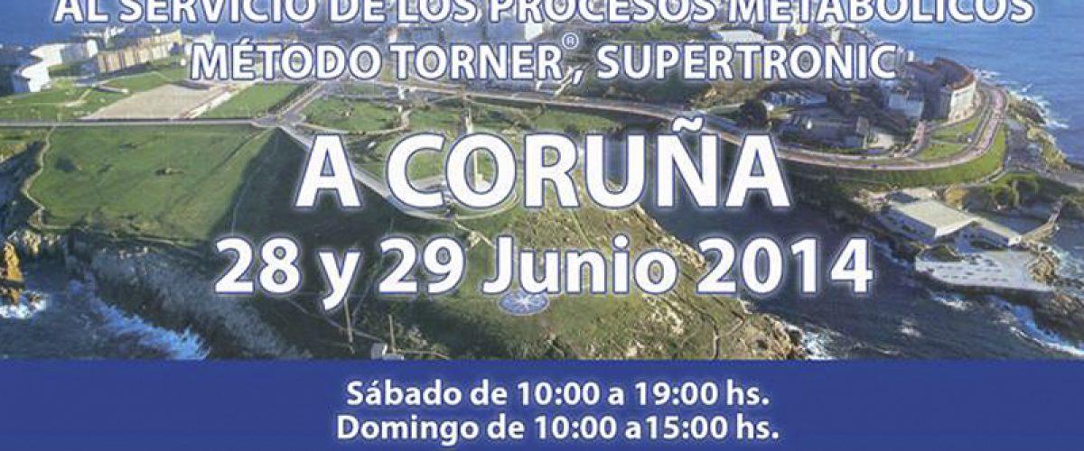 Seminario de Electropuntura Bioenergética (A Coruña, 28 y 29 de junio)