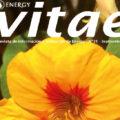 Revista Vitae, nº 31, septiembre 2014