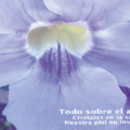Revista Vitae, nº 33. Invierno 2014