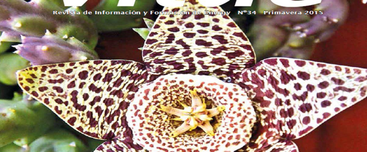 Revista Vitae, nº 34. Primavera 2015