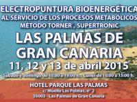 Seminario Energy (Las Palmas de Gran Canaria 11, 12 y 13 de abril)