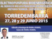 Seminario Energy (Torredembarra, 27, 28 y 29 de junio)