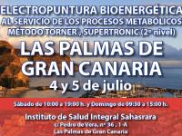 Seminario Energy (Las Palmas. 4 y 5 de julio)