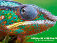 Manual de Veterinaria EnergyVet