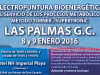 Seminario Energy (Las Palmas. 8 y 9 de enero)