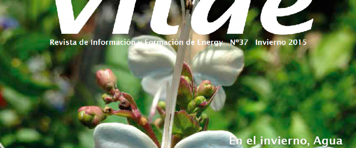 Revista Vitae 37, invierno 2015