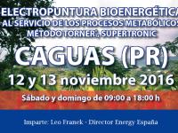 Seminario Energy – Caguas, Puerto Rico. 12 y 13 noviembre
