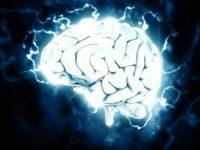 Las enfermedades neurológicas -tercera parte-