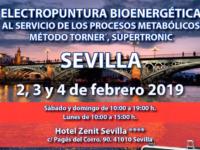Seminario Energy en Sevilla 2, 3 y 4 febrero 2019