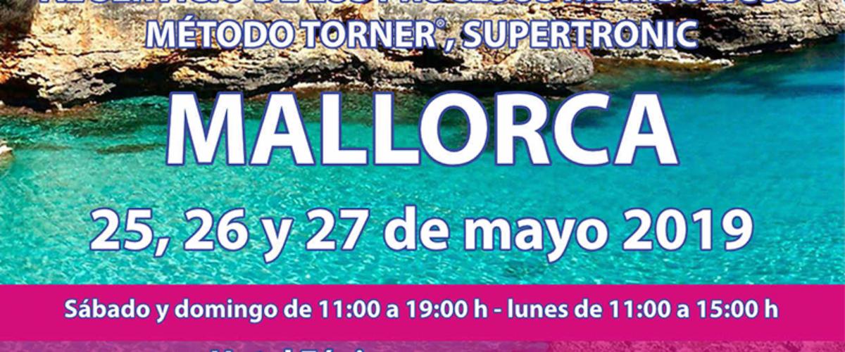 Seminario Energy en Mallorca: 25,26 y 27 mayo