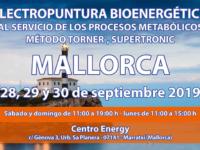 Seminario Energy en Mallorca: 28,29 y 30 septiembre 2019