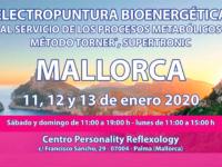 Seminario Energy en Mallorca: 11, 12 y 13 enero 2020