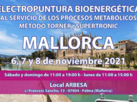 Seminario Energy en Mallorca: 6, 7 y 8 noviembre 2021